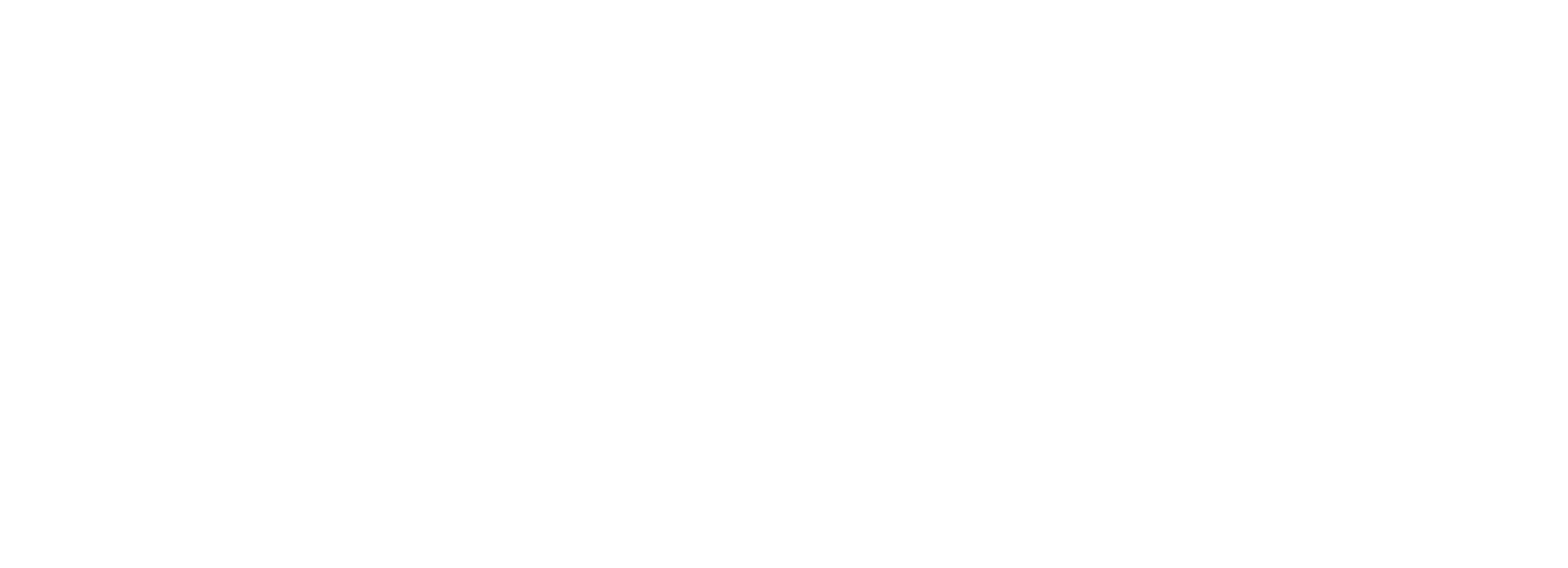logo_rocket_branco